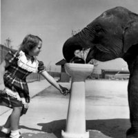 Girl with Elephant