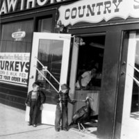 Hawthorn-Mellody Country Store